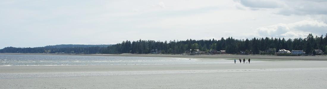 Saratoga Beach Vancouver Island
